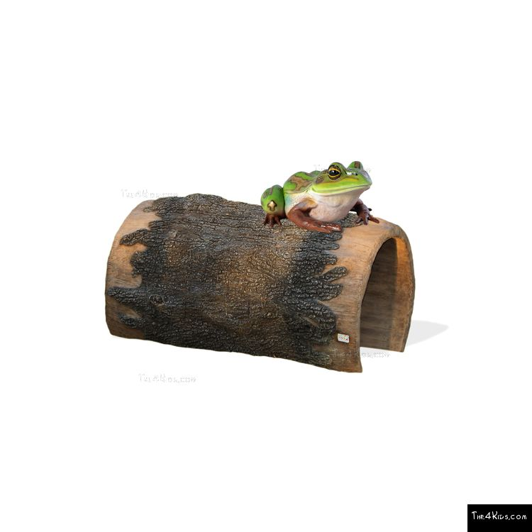 Image of Frog On A Log