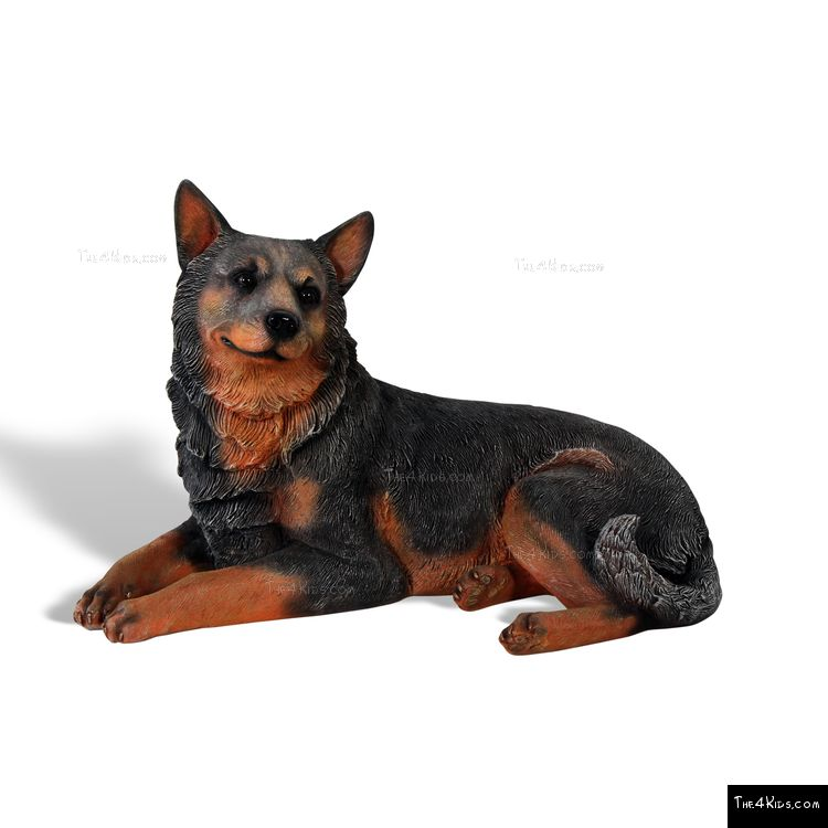 Image of Blue Heeler Lying Down