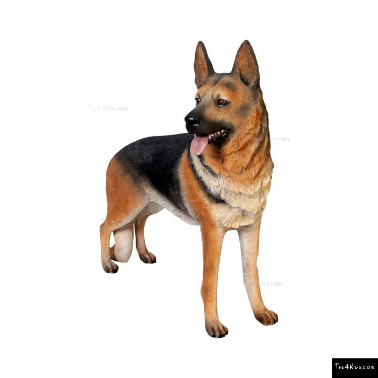 Image of German Shepherd 1