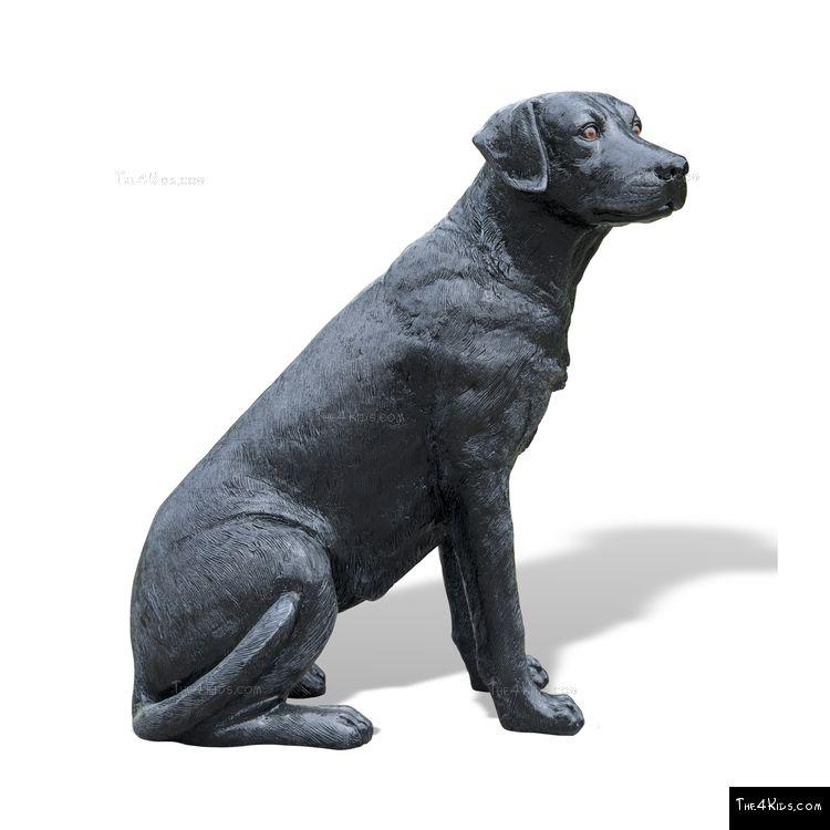 Image of Labrador Sitting