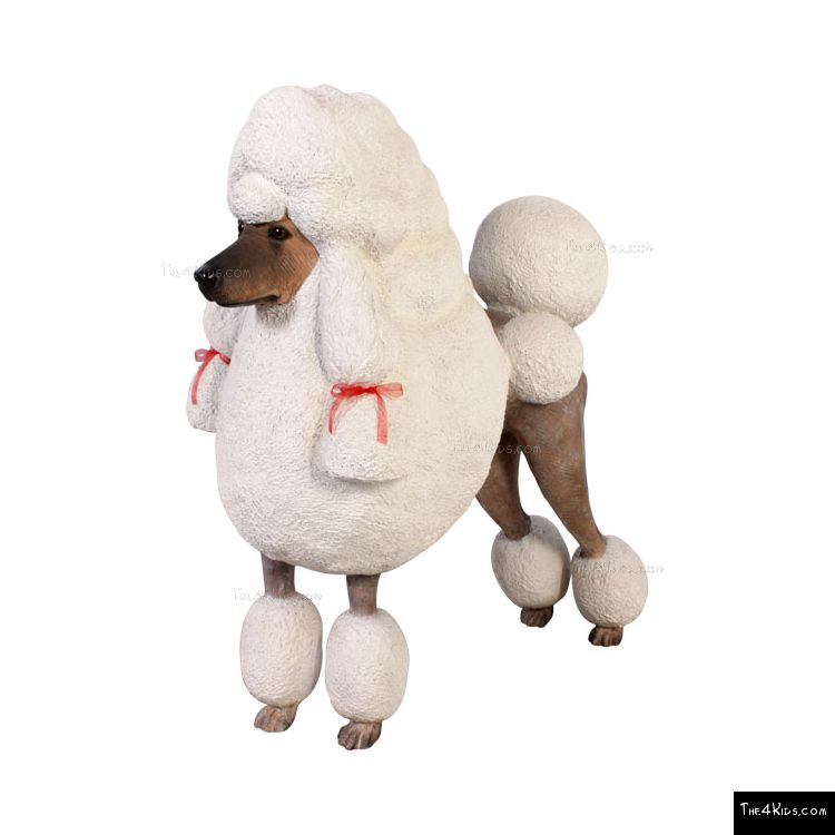 Image of Poodle
