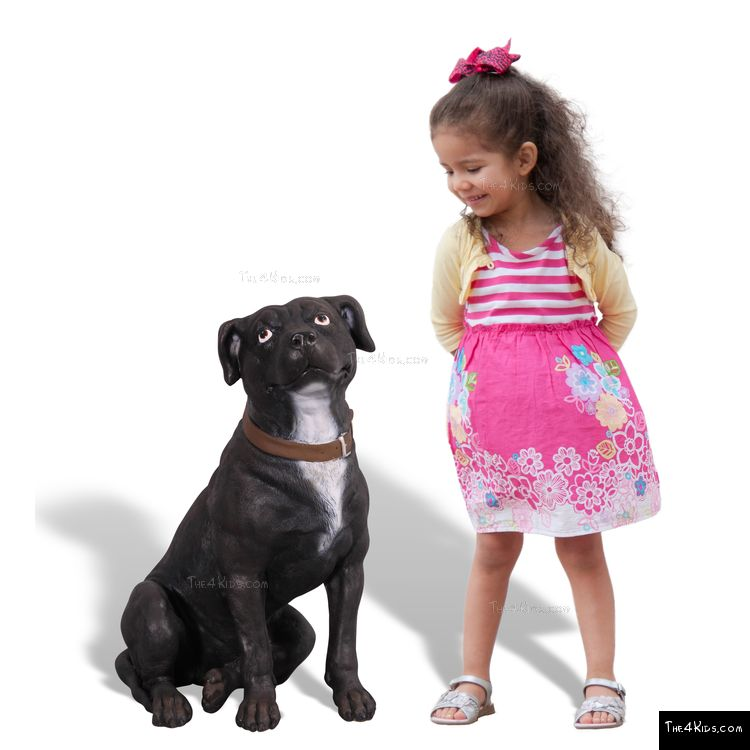 Image of Staffordshire Terrier Sitting