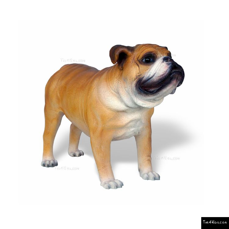 Image of Bulldog