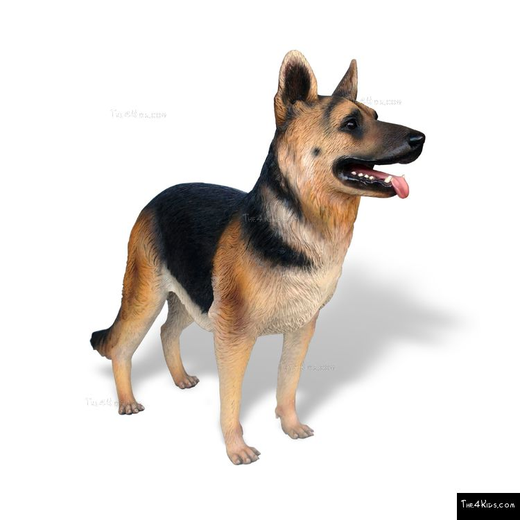 Image of German Shepherd 2
