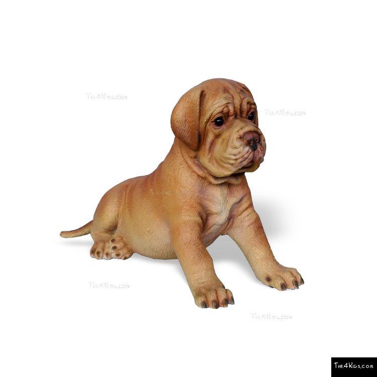 Image of Mastiff Pup