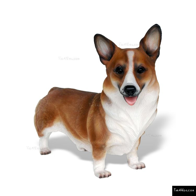 Image of Corgi