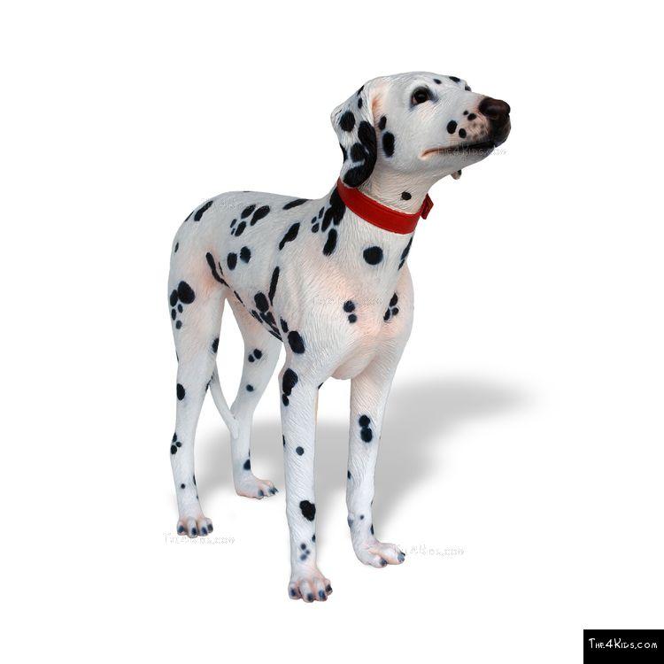 Image of Dalmatian