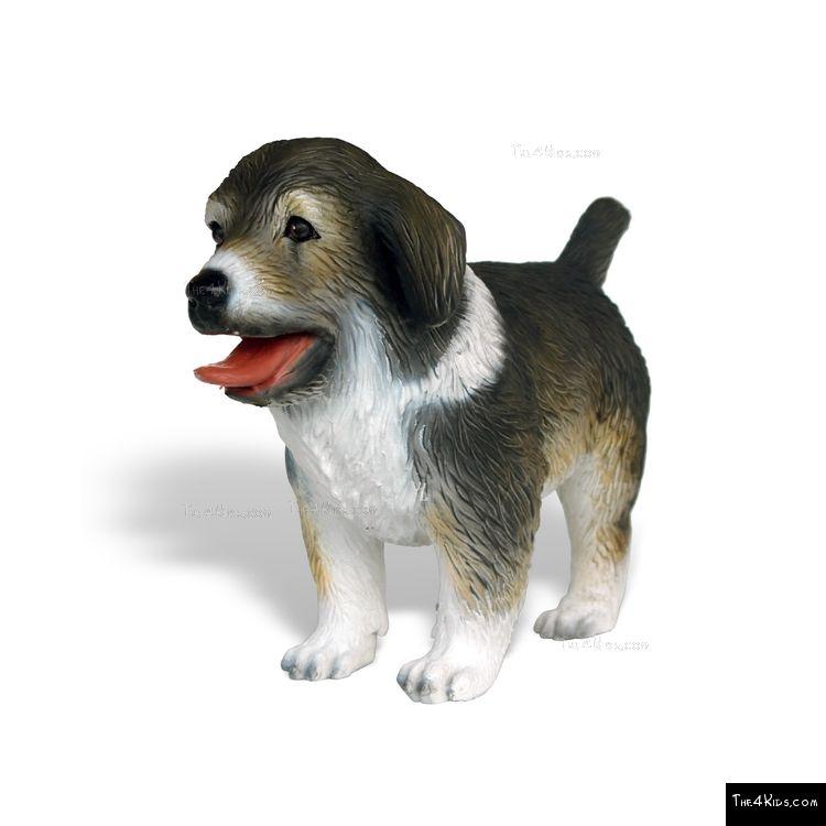 Image of Australian Shepherd Pup
