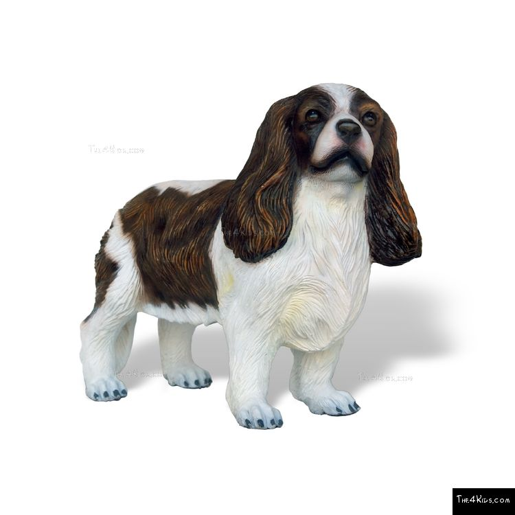 Image of Cavalier King Spaniel