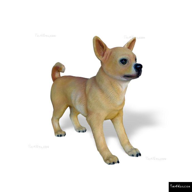 Image of Chihuahua