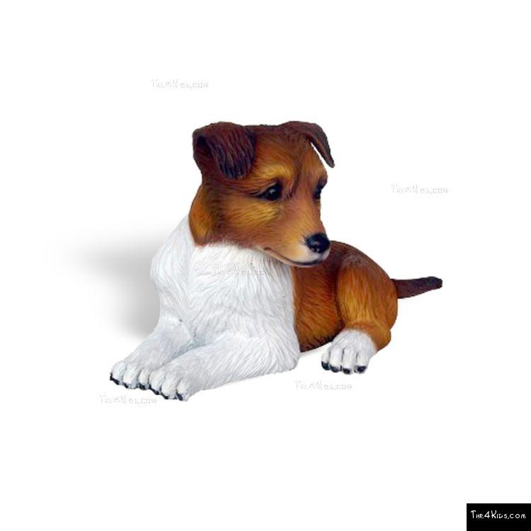 Image of Shetland Sheepdog Pup