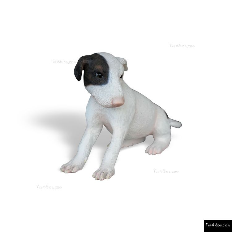 Image of Bull Terrier Pup