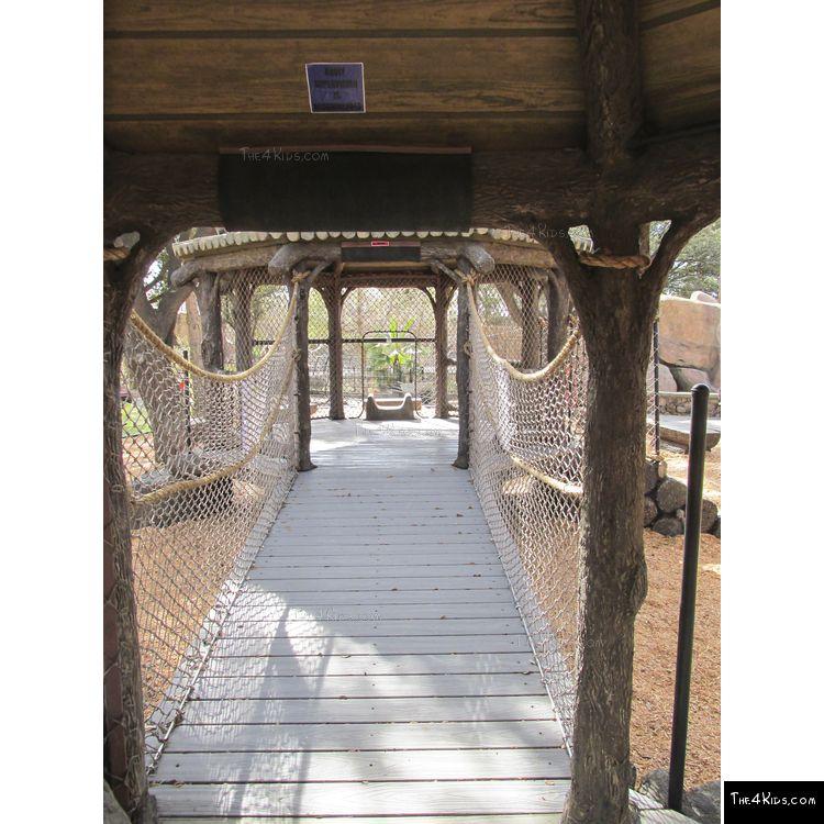 Image of Net Bridge