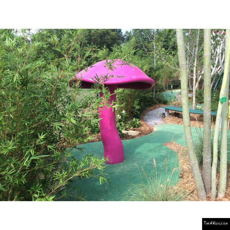 Image of Giant Mushroom