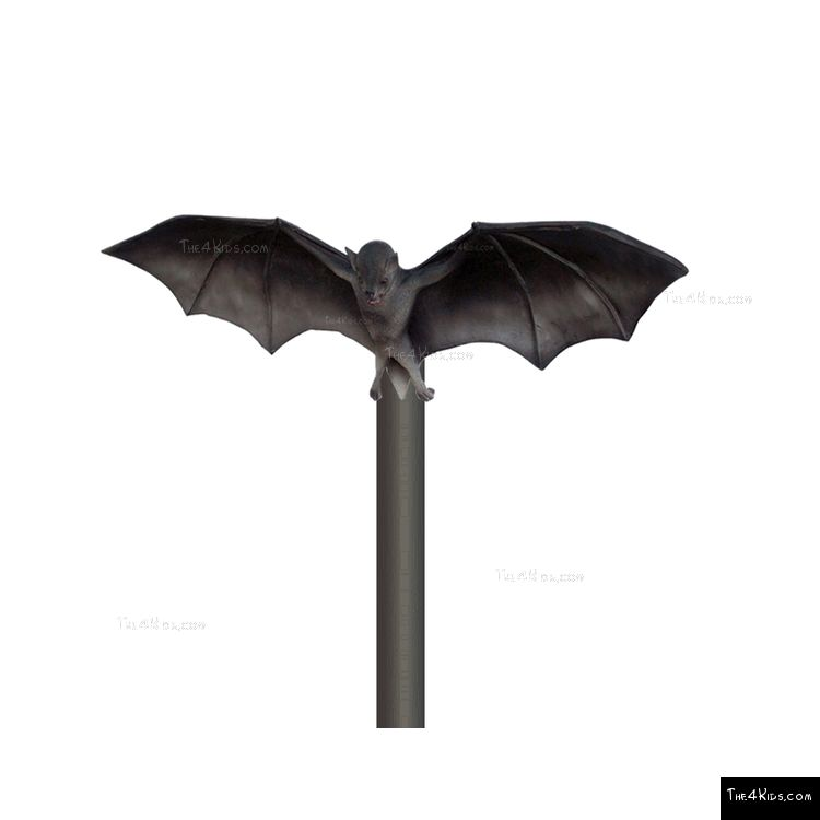 Image of Bat Post Topper