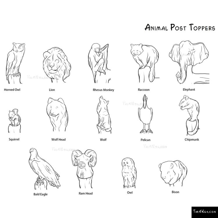Image of Animal Post Toppers
