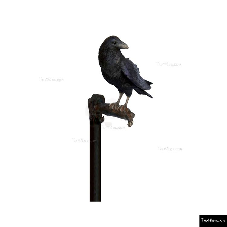 Image of Raven Post Topper