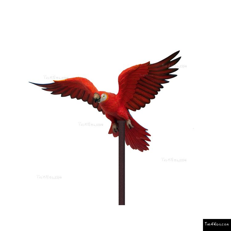 Image of Red Parrot Post Topper