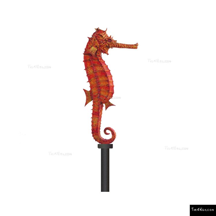 Image of Seahorse Post Topper