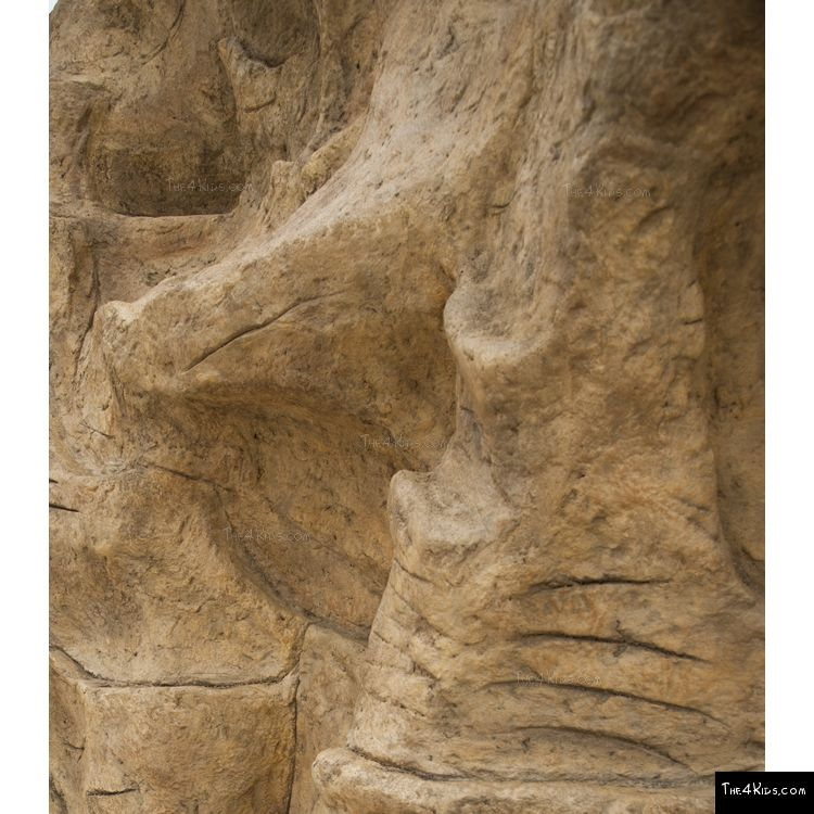 Image of Gibralter Rock Climber