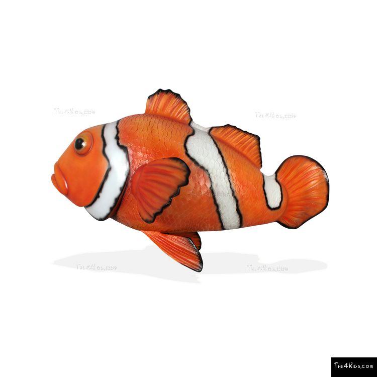 Image of Clown Fish Sculpture