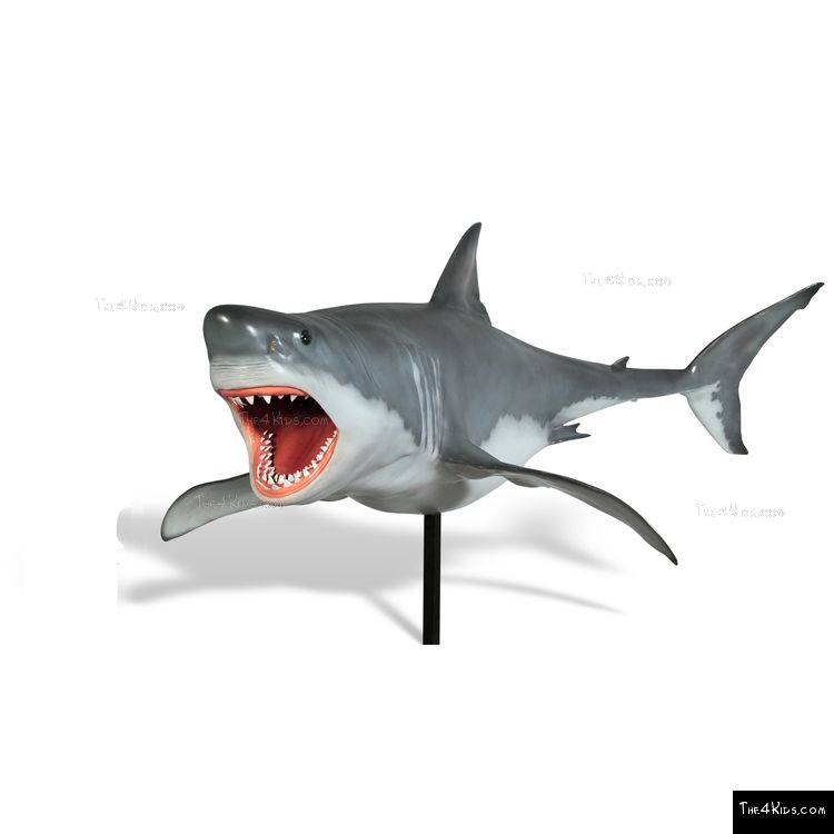 Image of Great White Shark Sculpture