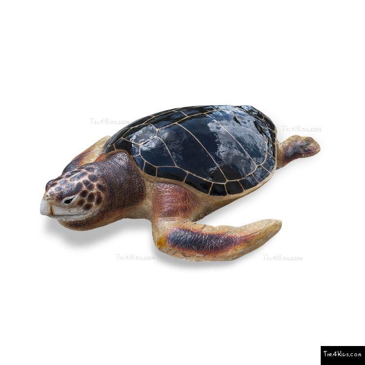 Image of Loggerhead Turtle