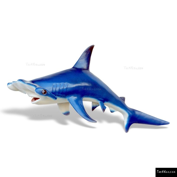 Image of Hammer Head Shark Sculpture