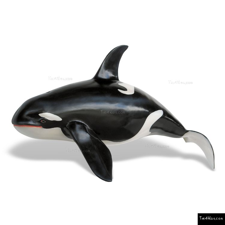Image of Orca Wall Sculpture