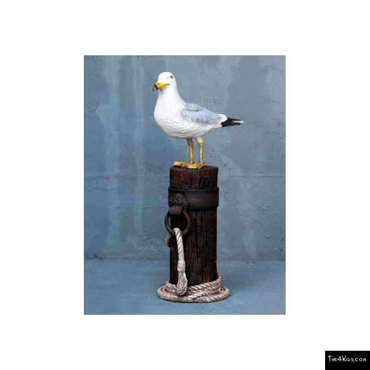 Image of SEA136 Seagull on Post_NEW3846