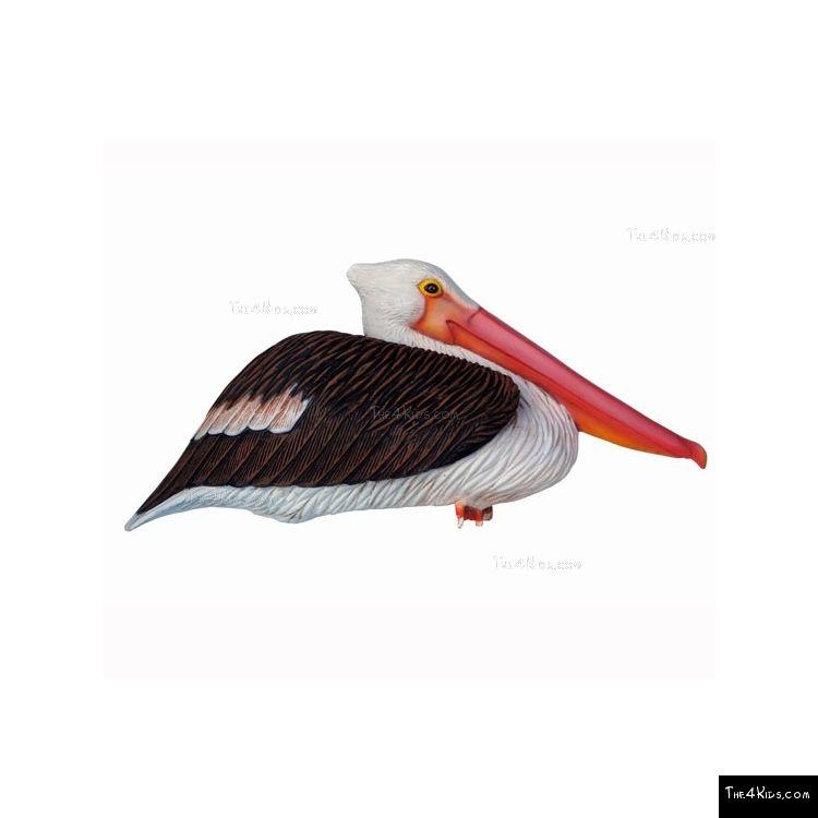 Image of Sitting Pelican Sculpture