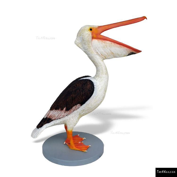 Image of Male Pelican Sculpture