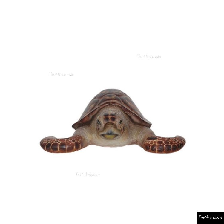 Image of Hawksbill Sea Turtle
