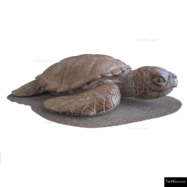 Image of Sea Turtle Play Sculpture