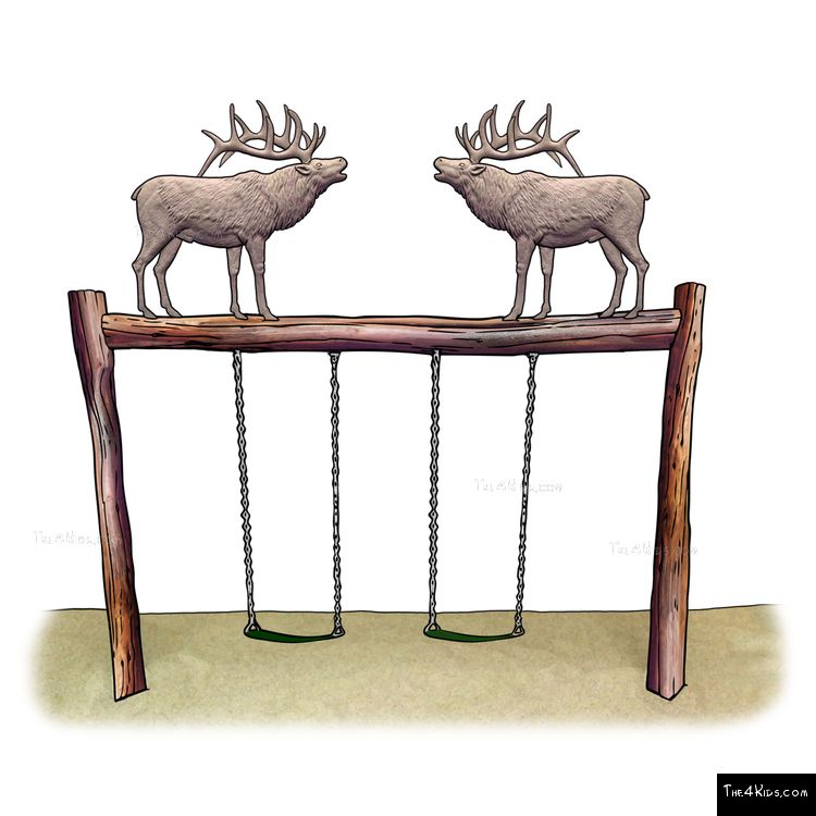 Image of Elk Swing