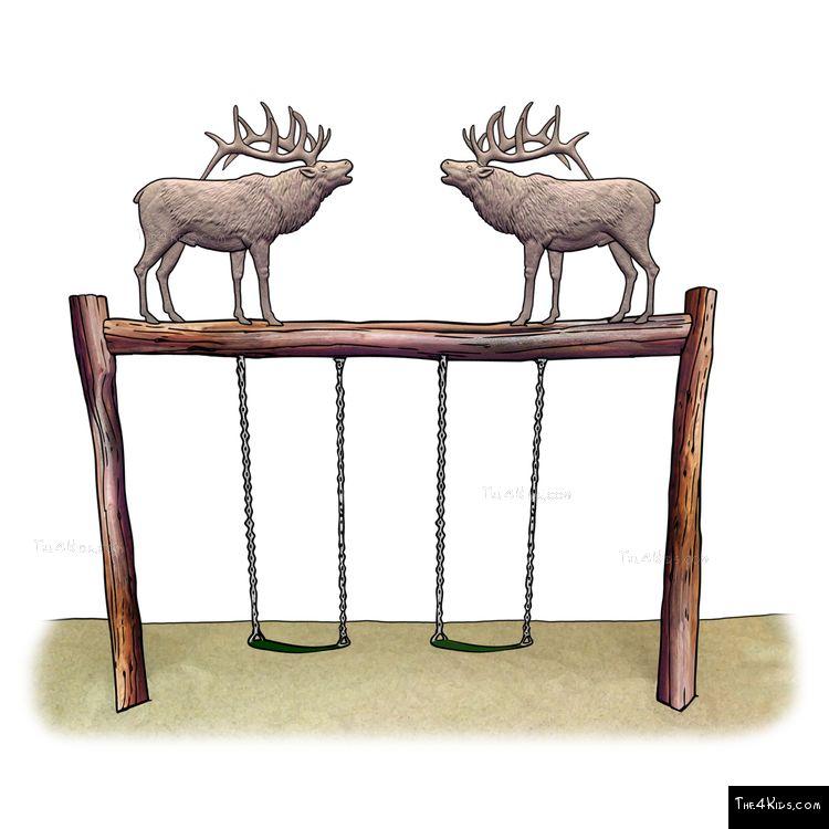 Image of Elk Swing