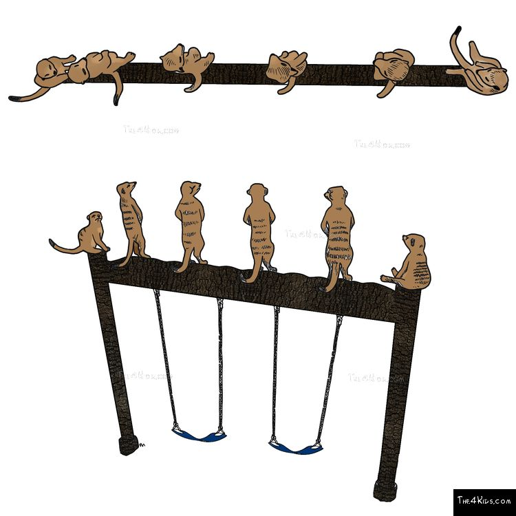 Image of Meerkat Swing