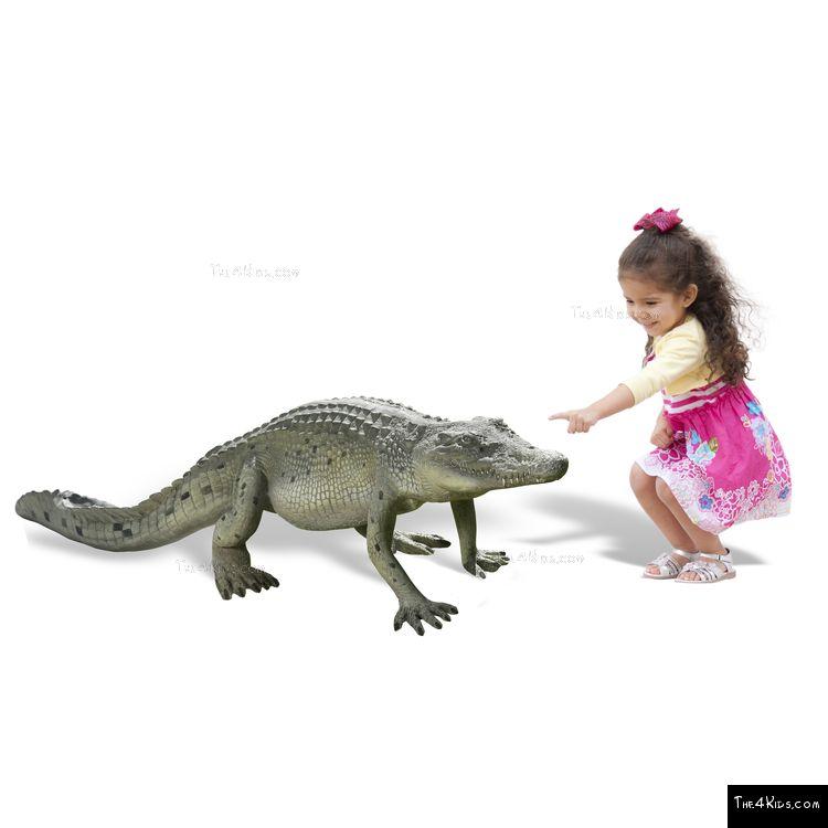 Image of 4ft Walking Crocodile