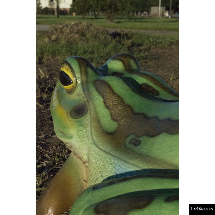 Image of Colorful Frog Play Sculpture