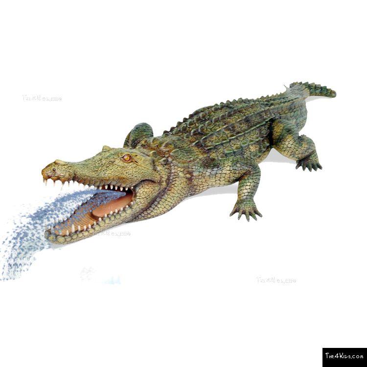 Image of 11ft Crocodile Sculpture
