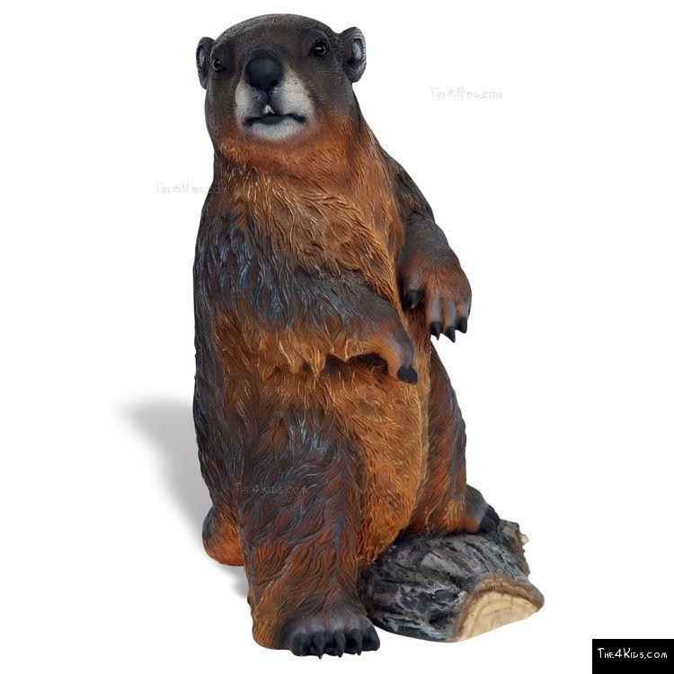 Image of Beaver
