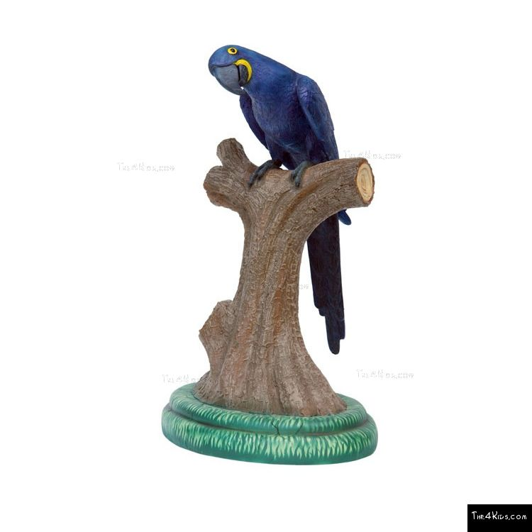 Image of Hyacinth Macaw