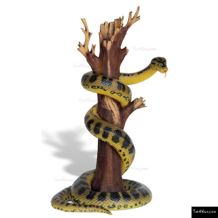 Image of Anaconda on Tree
