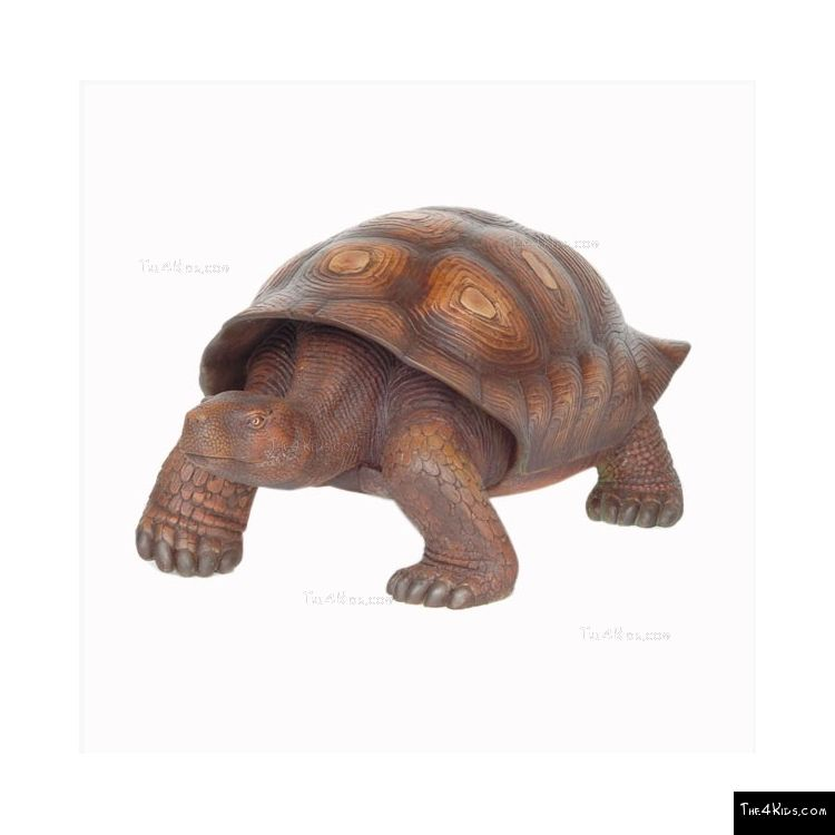 Image of Turtle Sculpture