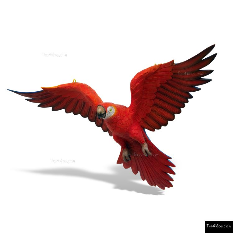 Image of Red Parrot Sculpture