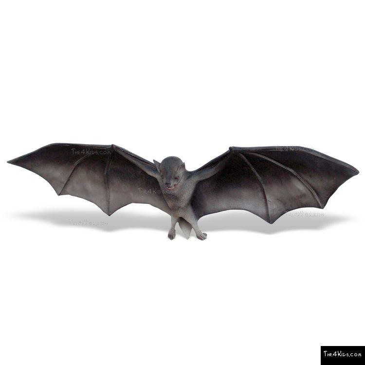 Image of Small Bat