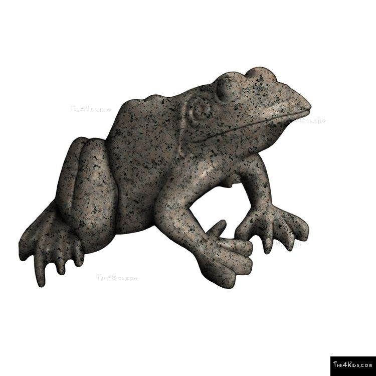 Image of Large Frog