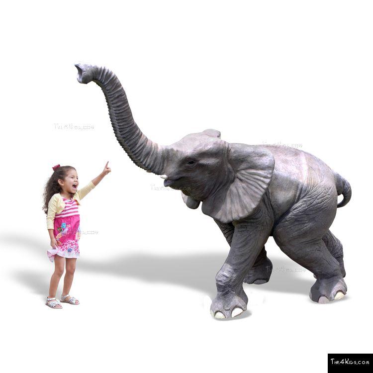 Image of Baby Elephant