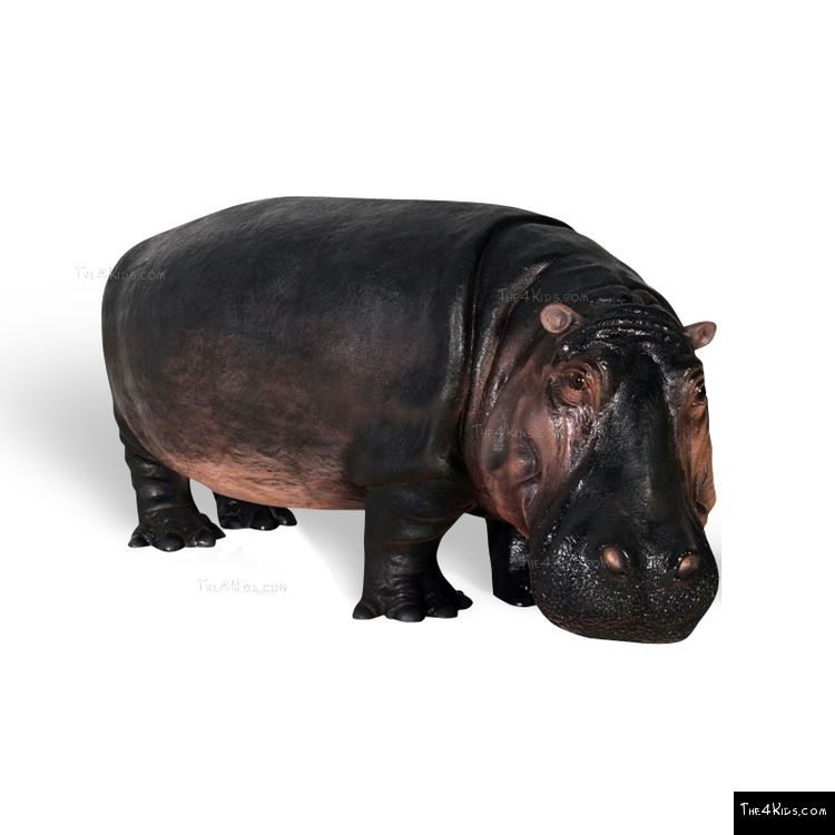 Image of Hippopotamus Play Sculpture