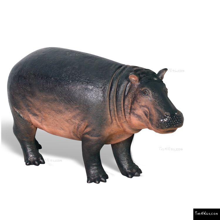 Image of Hippopotamus Baby